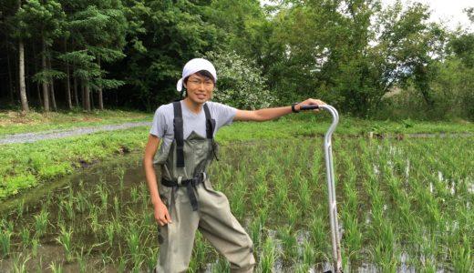 今年も岩手県遠野市で滞在、自分が定期的に日本の田舎に戻る理由